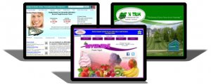 Small business website design from BWC Marketing